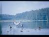 mm_5rano-jezioro-sasek-wlk01081