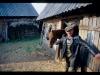 mm-_w-wiejskiej-chacie-ukraina00609