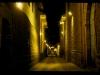 mm_peru-cuzco00101