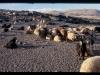 mm_w-wiejskiej-chacie-kurdystan01008