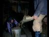 mm-_w-wiejskiej-chacie-ukraina-pikuj00559